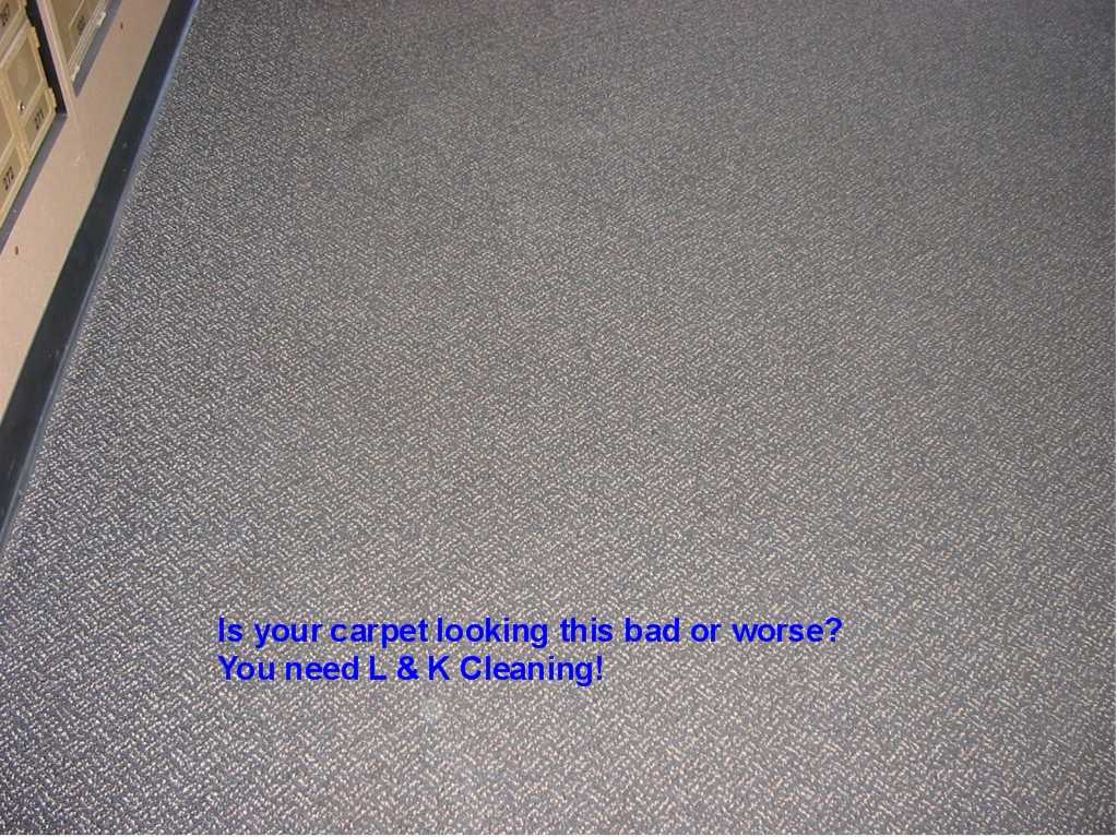 carpetcaredirty1LK.jpg